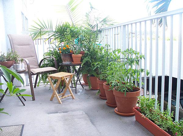 лайфхаки для сада на балконе