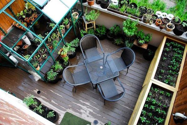 летний сад балконе