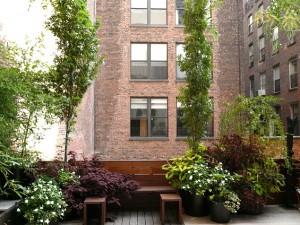 мини сад на балконе фото