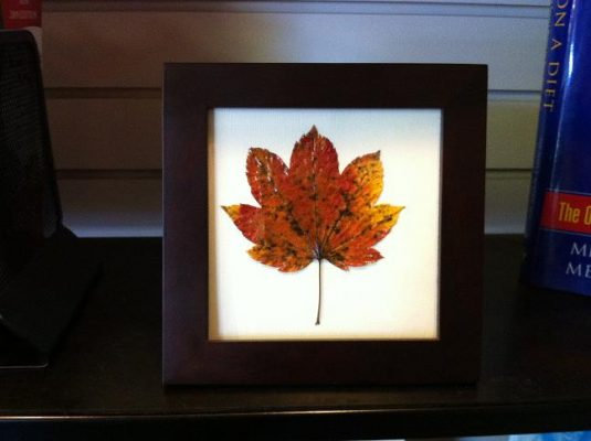 изделия из осенних листьев