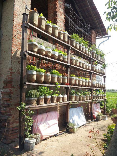 вертикальный сад из пластиковых бутылок