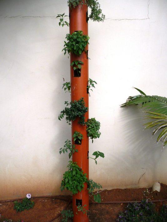 подвесной вертикальный сад из водосточного желоба