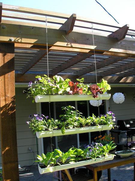 вертикальный сад из водосточного желоба
