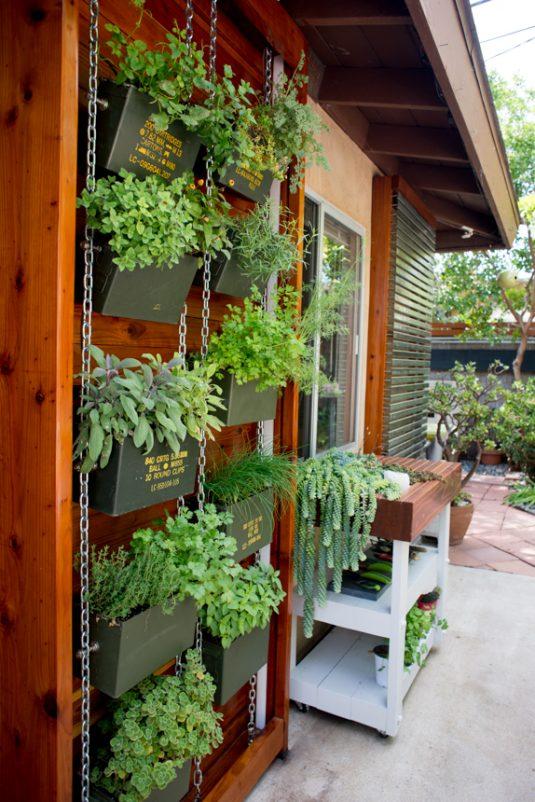 вертикальный сад дома