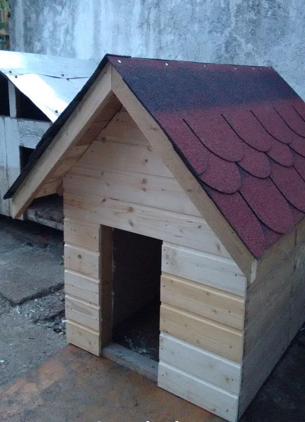 як зробити будку для собаки поетапно
