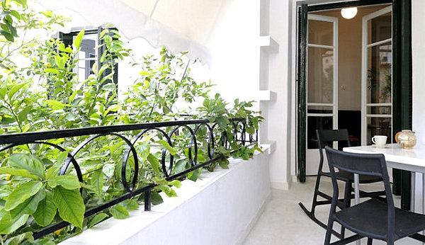 сад на балконі своїми руками