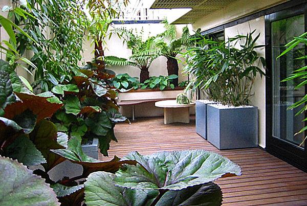 сад на балконі