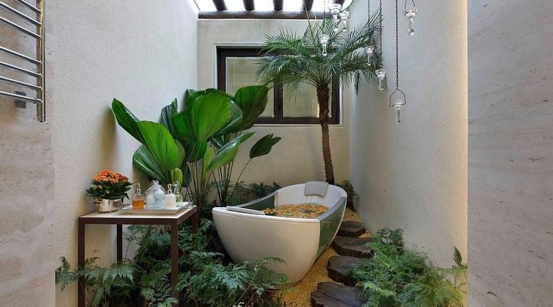 рослини у ванній кімнаті