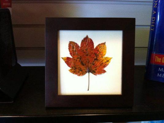 вироби з осіннього листя