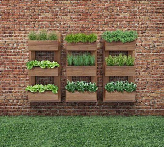 вертикальний сад на стіні