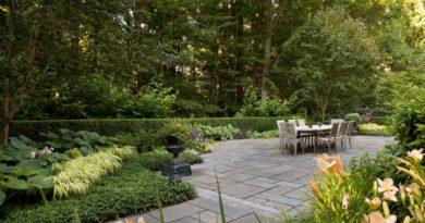 озеленення подвір'я