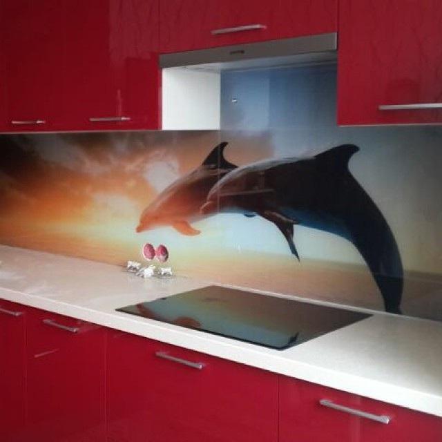 скинали для кухни дельфины фото