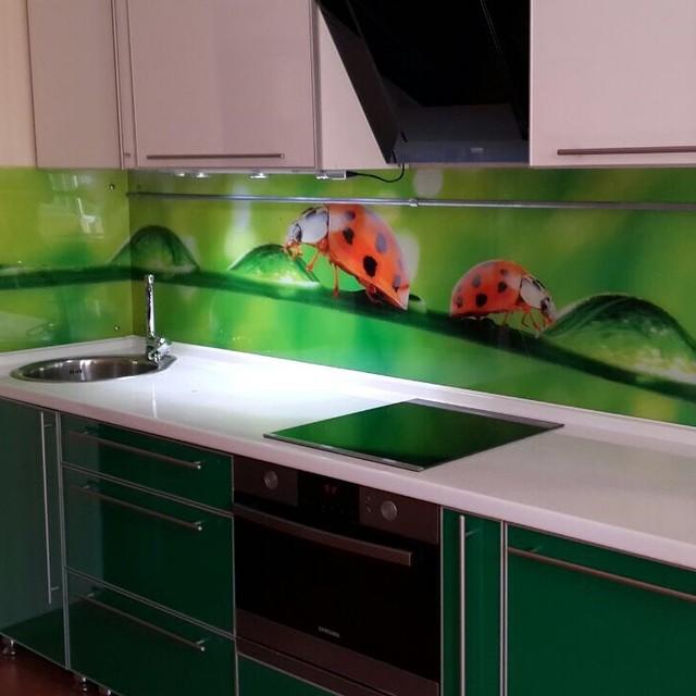 стеклянный фартук на кухне фото