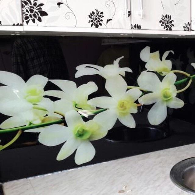 скинали цветы фото